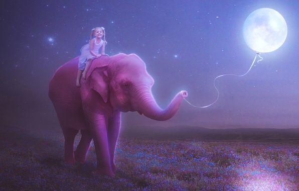 Картинки слон рисунок и картинки (6)