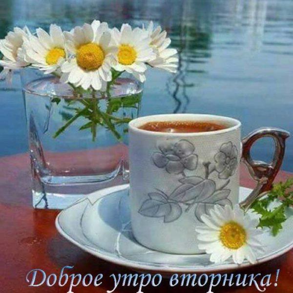 Картинки с добрым утром во вторник - подборка (4)