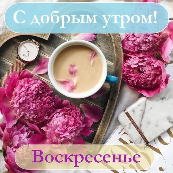 Картинки другу, открытка с добрым утром воскресенья красивая