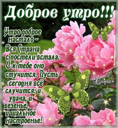 Картинки с добрым утром и хорошего настроения женщине (6)