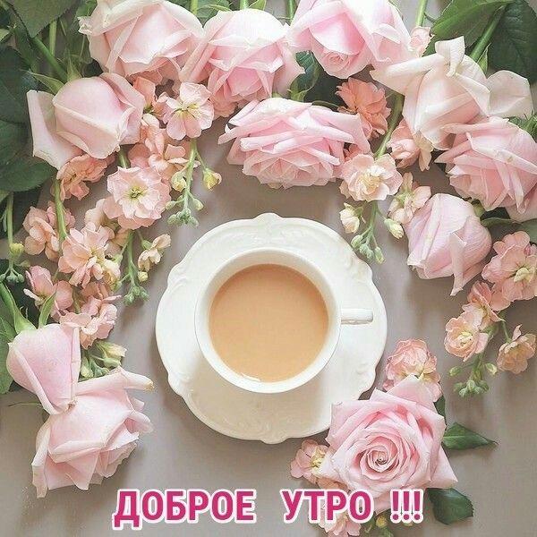 Картинки с добрым утром и хорошим днем женщине (11)