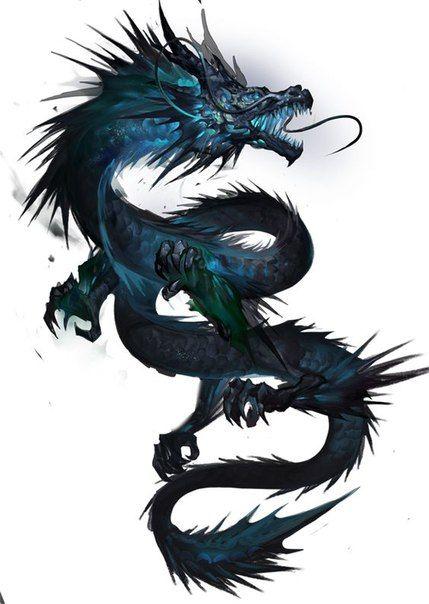 Картинки тату Китайский Дракон - подборка фото (6)