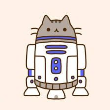 Картинки тумблер кот и котики (1)