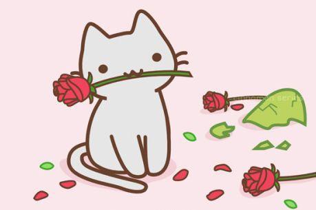 Картинки тумблер кот и котики (16)