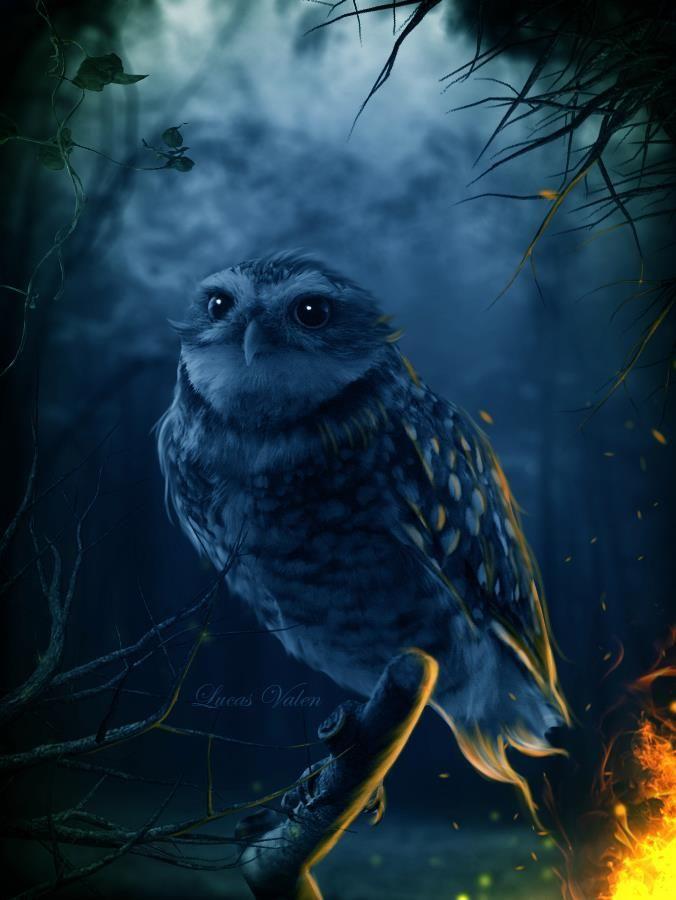 Красивые картинки Легенды Ночных Стражей (17)