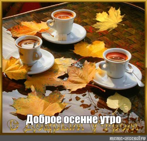 Красивые картинки доброе осеннее утро - очень красивые (9)