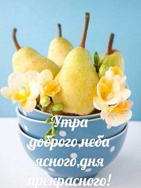 Красивые картинки доброе утро и отличного вам дня (1)