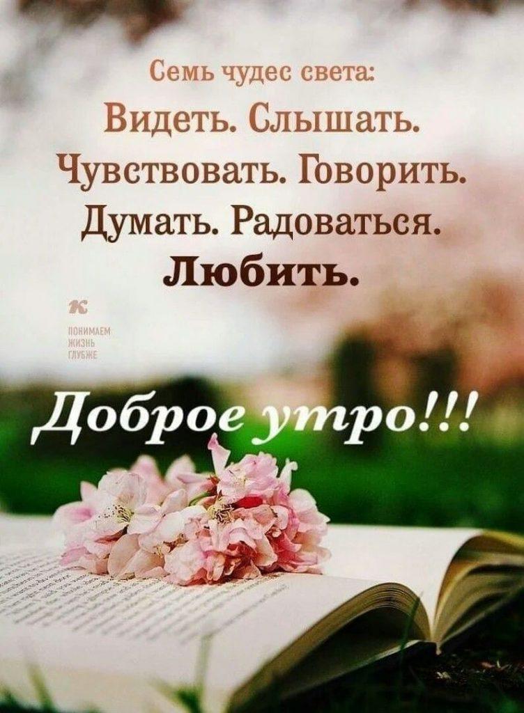 Красивые картинки доброе утро и отличного вам дня (13)