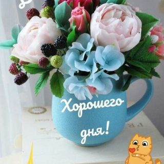 Красивые картинки доброе утро и отличного вам дня (14)