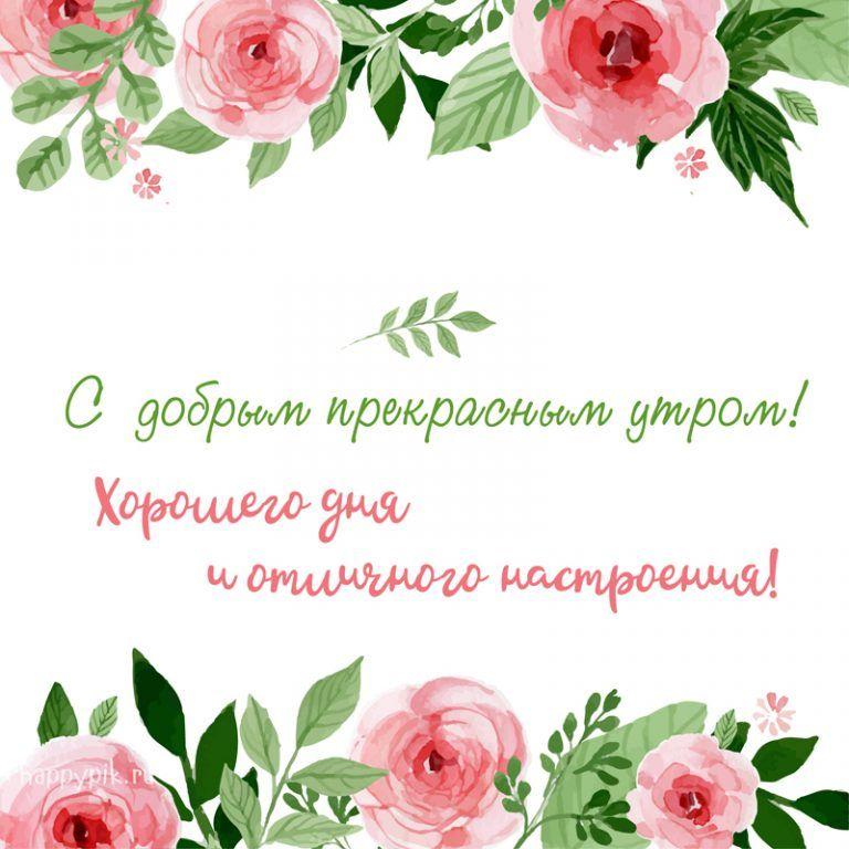 Красивые картинки доброе утро и отличного вам дня (4)