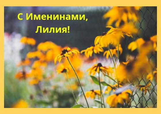 Красивые картинки на именины Лилии с днём ангела (10)