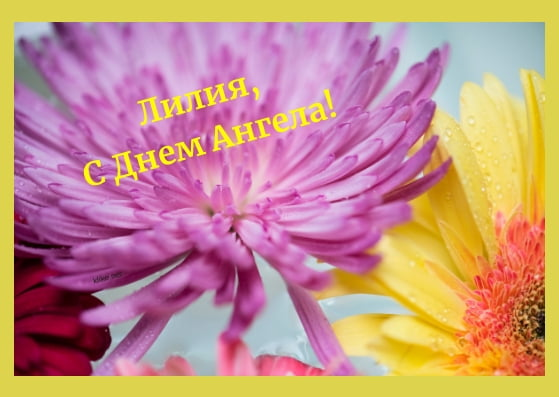 Красивые картинки на именины Лилии с днём ангела (12)