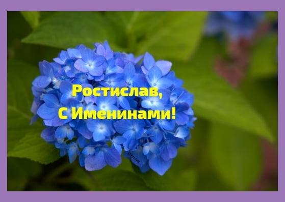 Красивые картинки на именины Ростислава с днём ангела (15)
