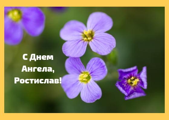 Красивые картинки на именины Ростислава с днём ангела (17)