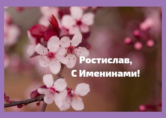 Красивые картинки на именины Ростислава с днём ангела (19)