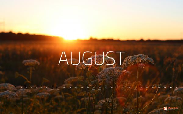 Красивые картинки про август для настроения (7)