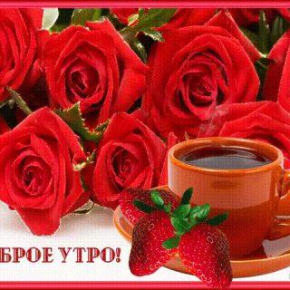 Красивые картинки с добрым утром девушке с розами (11)