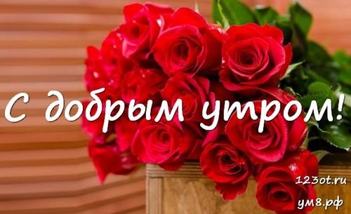 Красивые картинки с добрым утром девушке с розами (2)