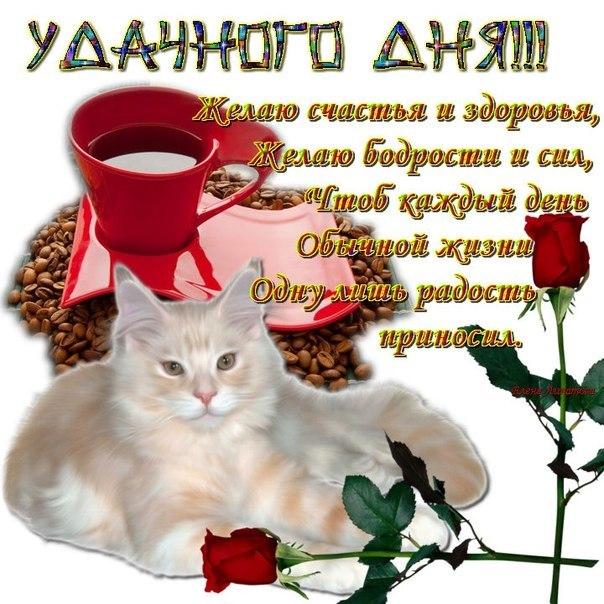 Красивые открытки любимой женщине хорошего дня