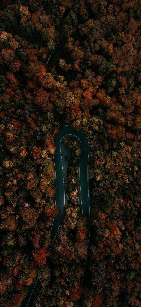 Красивые картинки 4К на телефон на заставку - подборка (9)
