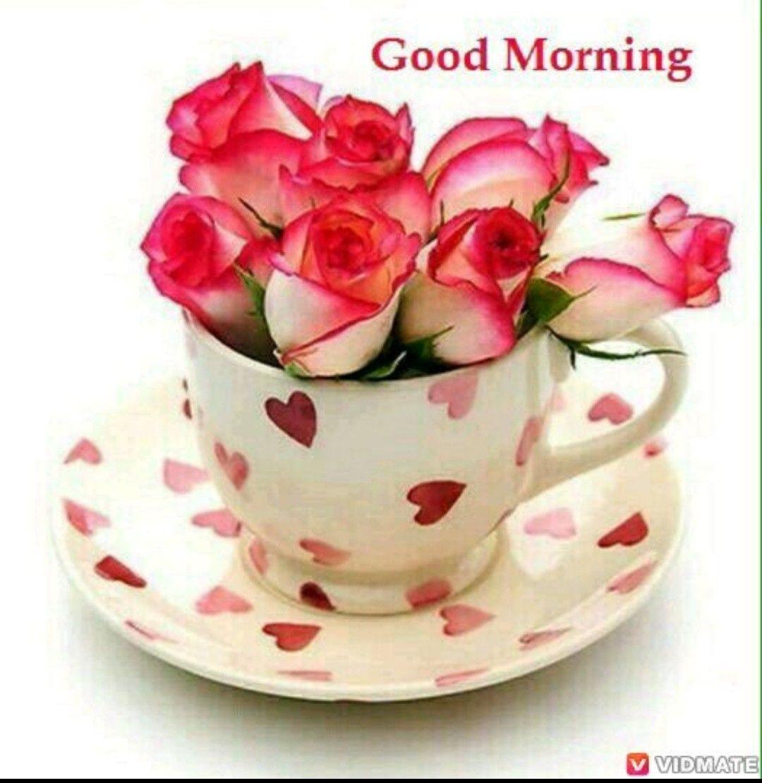 Красивые открытки с добрым утром мерцающие для женщин (16)
