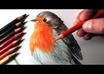 Красивые рисунки цветным карандашом - подборка (25)