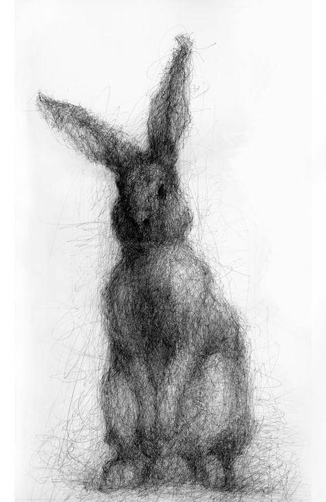 Кролик рисунок и картинки (21)