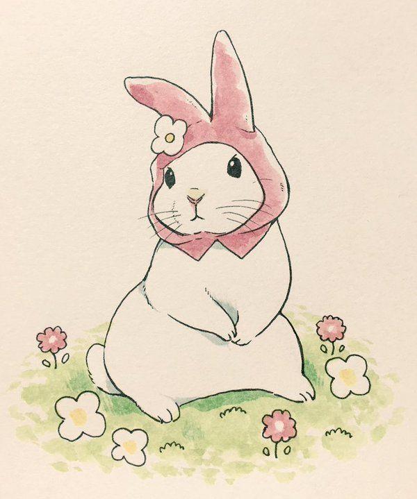 Кролик рисунок и картинки (22)