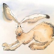 Кролик рисунок и картинки (26)