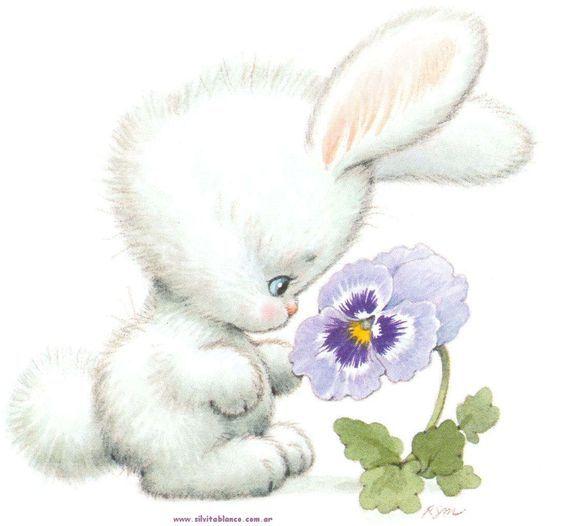 Кролик рисунок и картинки (5)
