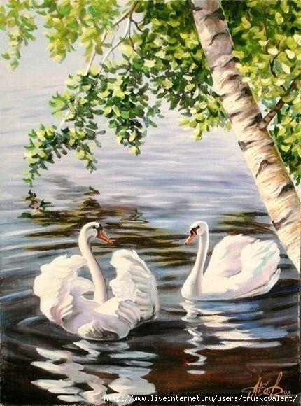 Лебеди красивые картинки и фото (12)