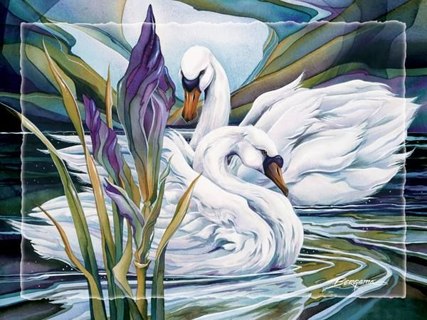 Лебеди красивые картинки и фото (14)