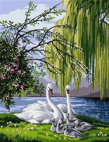 Лебеди красивые картинки и фото (28)