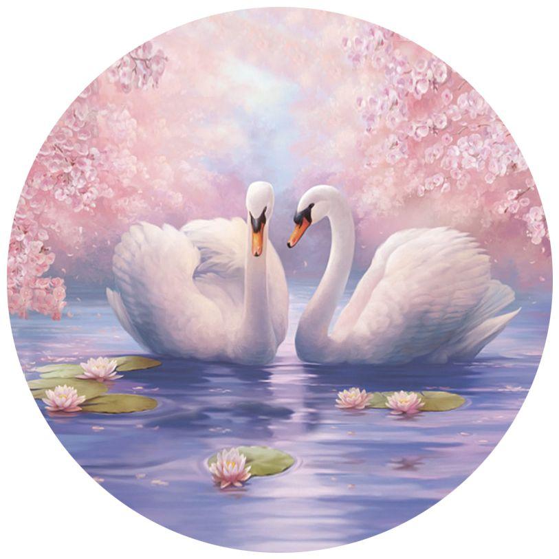 картинки с лебедями к дню цветения приходится