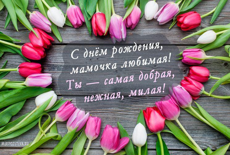 Открытки с днем рождения женщине красивые цветы тюльпаны (16)