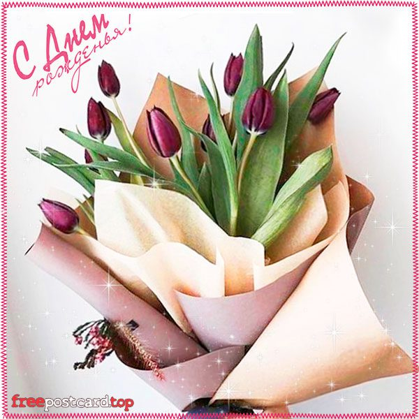 Открытки с днем рождения женщине красивые цветы тюльпаны (3)