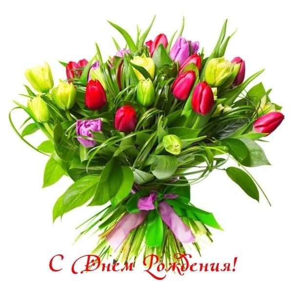 Открытки с днем рождения женщине красивые цветы тюльпаны (5)