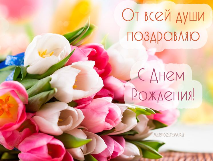 Открытки с днем рождения женщине красивые цветы тюльпаны (8)