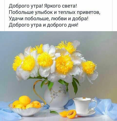 Открытки с добрым утром и хорошим настроением женщине (15)