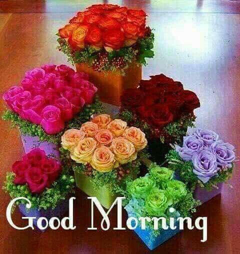 Открытки с добрым утром и хорошим настроением женщине (6)