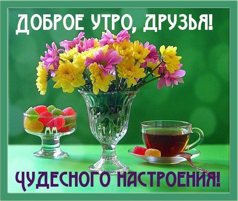 Пожелания с добрым утром друзьям прикольные в картинках (17)