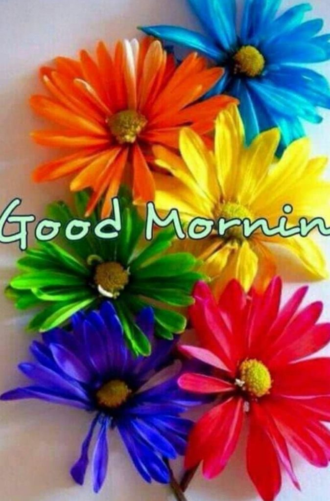 Пожелания с добрым утром любимой женщине в картинках (14)