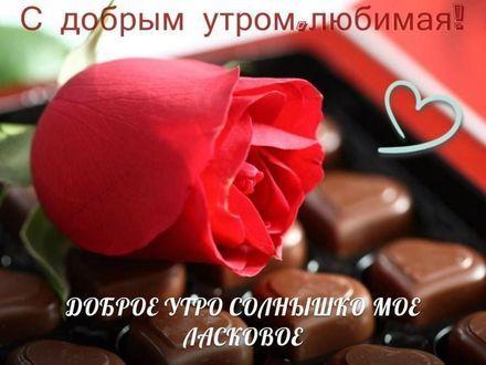 Поздравления с добрым утром любимой женщине в картинках (6)