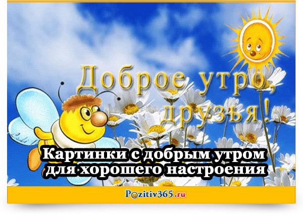 Позитивные картинки для поднятия настроения с добрым утром (11)