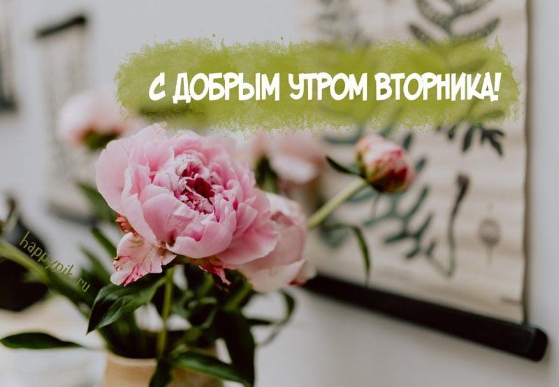 Позитивные картинки для поднятия настроения с добрым утром (18)