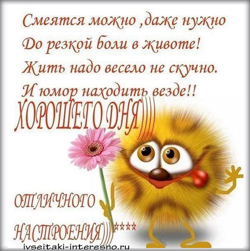 Позитивные картинки для поднятия настроения с добрым утром (8)