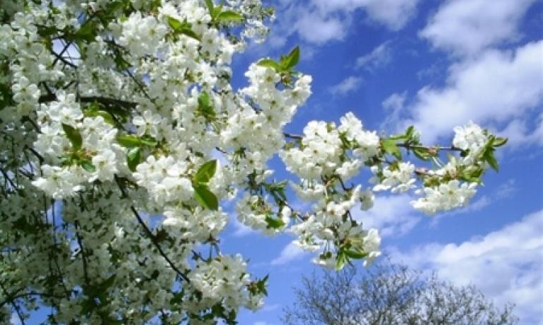 Прикольные и красивые картинки про Апрель (10)