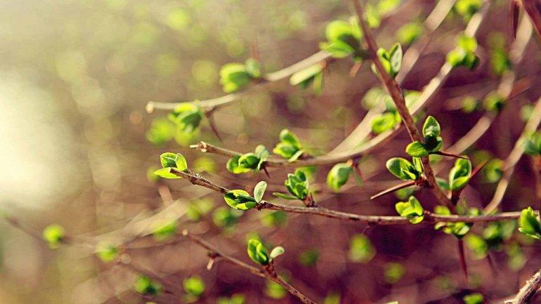 Прикольные и красивые картинки про Апрель (12)