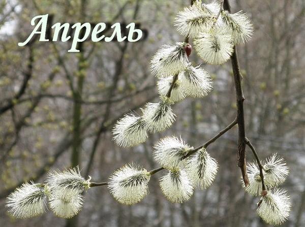 Прикольные и красивые картинки про Апрель (13)