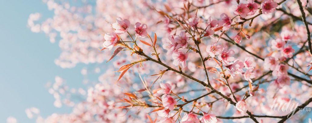 Прикольные и красивые картинки про Апрель (2)